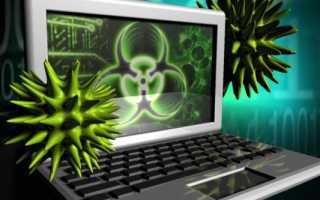 Компьютерный червь и вирус отличие