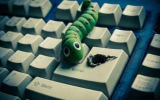 Компьютерный вирус от компьютерного червя