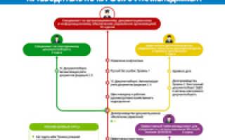 Powerpoint обучение онлайн бесплатно